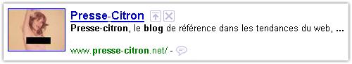 Google : Vignette de blog