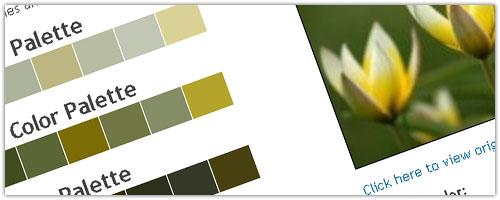 Colors Palette Generator
