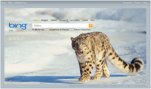 Bing: Page d'accueil