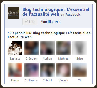 Facebook : Ancienne Like Box