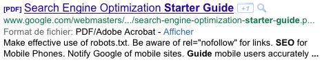 Google : Document PDF dans les SERPS