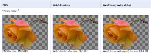 Images : PNG vs WebP lossless & lossy